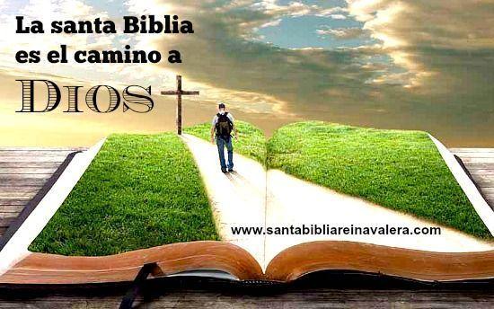 Santa Biblia Reina Valera 1960 Toda La Verdad Leer Y Descargar
